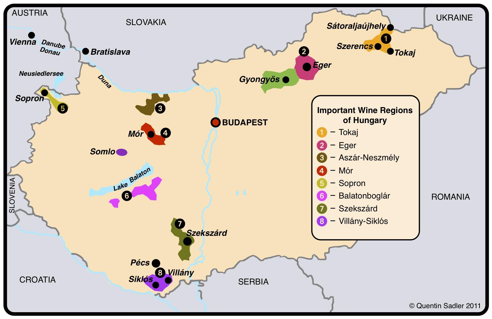 Appellation vin : les étapes de la fabrication de vin